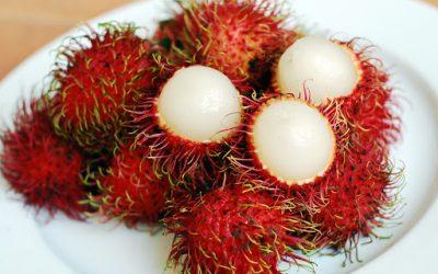 Rambutan Meyvesi Faydaları Nelerdir? Nasıl Yenir?