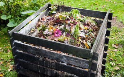 Kompost Nedir? Evde Kompost Nasıl Yapılır?