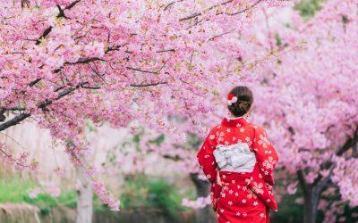 Ichigo Ichie Nedir? Japonların Mutluluk Felsefesi