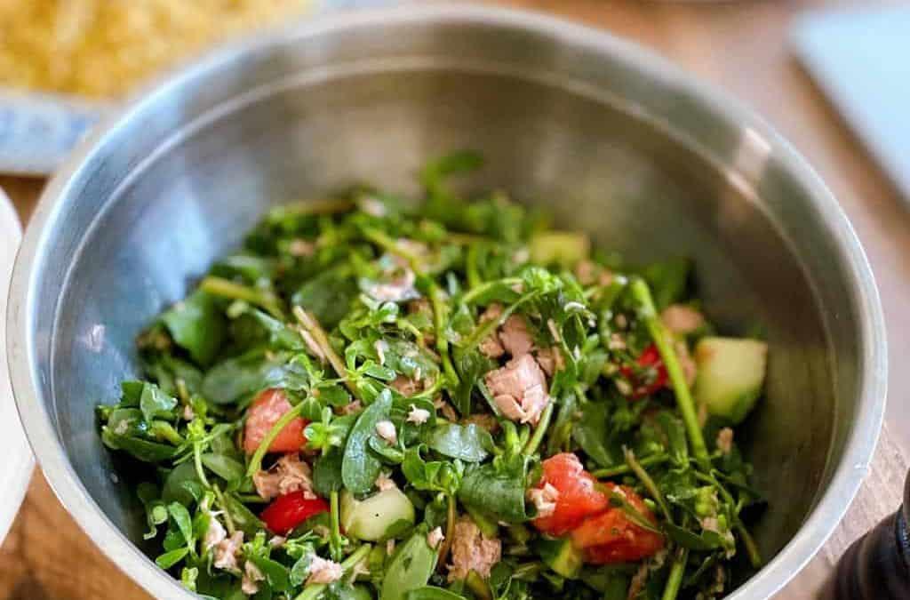 Ton Balıklı Semizotu Salatası Tarifi