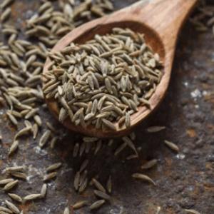 kimyon yerli tohum