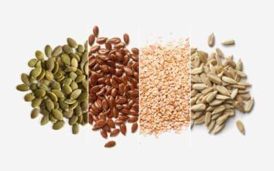 Tohum Rotasyonu Tohum Döngüsü Nedir?