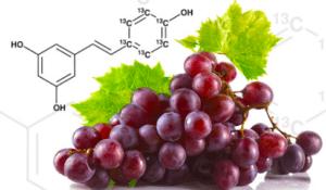 resveratrol quercetin ne işe yarar