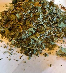 Böğürtlen yaprağı çayı Hamilelik